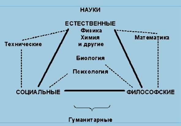 Треугольник кедрова