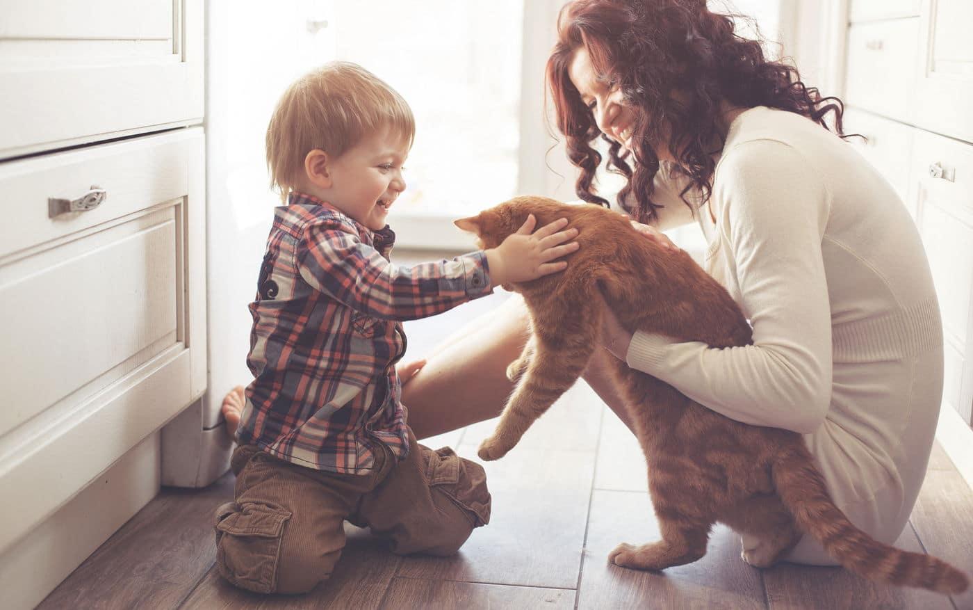 Ребенок ухаживает за котенком